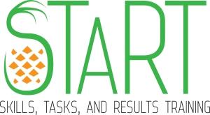 AHLEI START logo