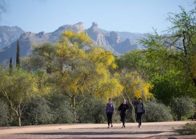 Canyon Ranch Tucson 2
